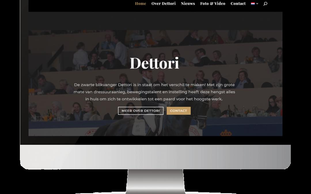 Case Study Dettori